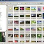 Imagine Picture Viewer full Download Free Torrent